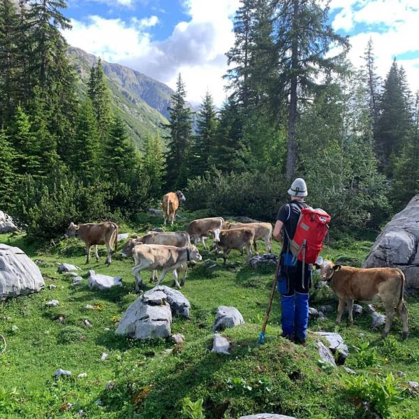 #alpeformarien #älpler Formarinsee