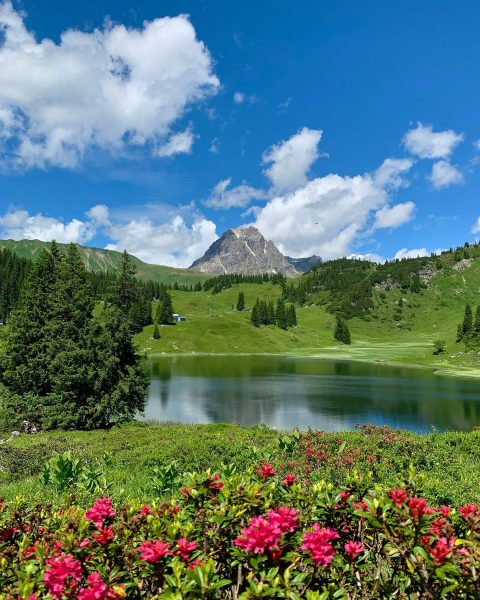 Wo die Almreserl wachsen und der Enzian blüaht, da ist unser Arlberg zu ...