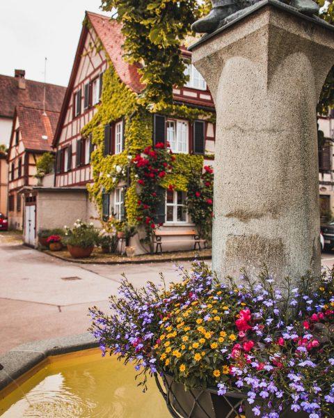 Happy Bergfest ihr Lieben 💛 . Heute geht's weiter mit ein paar Eindrücken aus dem schönen Bregenz...