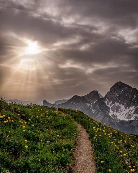 #naturphotography #naturlovers #alpenliebe #amazingview #discoveraustria #landscape #weloveaustria #adventuretime #getoutside #bealpine #berge #mountainview #igersmountain #enjoyaustria #ig_nature #feelaustria #landscapephotography...