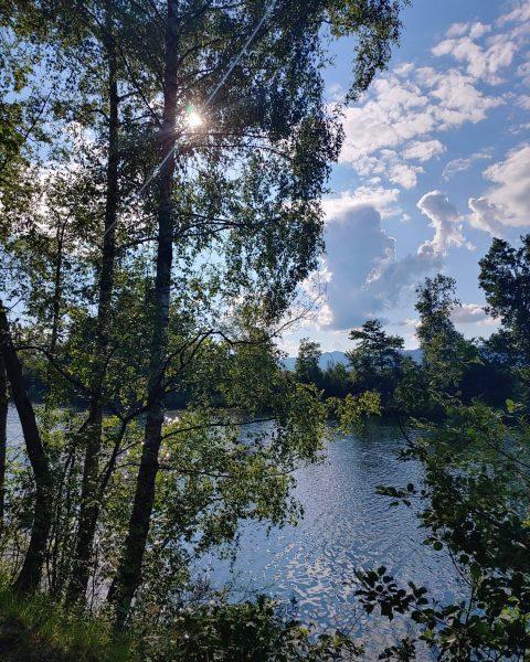 Kleines Paradies - das alte Rhein Ufer - wunderbar zum laufen und die ...