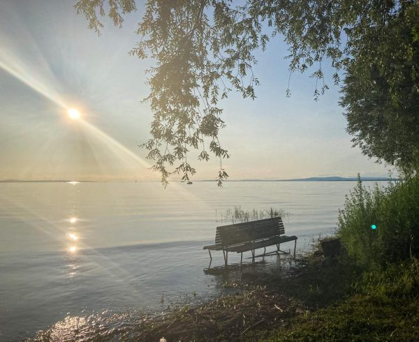 One of those summer days at the lake when even the bench needs ...