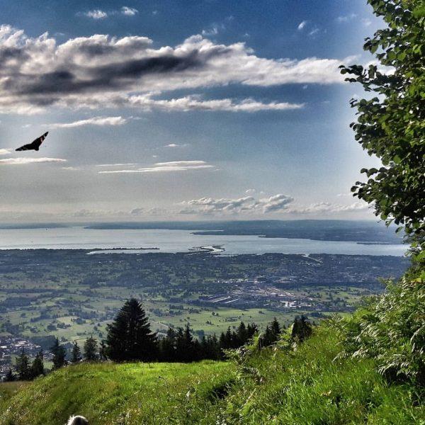 #vombödelenachdornbirn #bödele #dornbirn #schwende #watzenegg #sonntagsausflug #eisbecher #apfelstrudel #familienzeit #familienausflug #aussicht #weitblick #bodensee ...