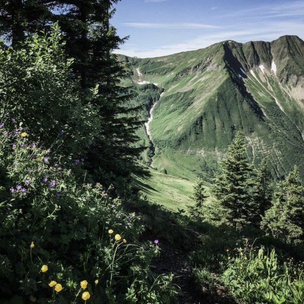 Sommer leben. Berge lieben. Urlaub genießen. . . Lange lässt der Sommer nicht auf sich warten. Und...