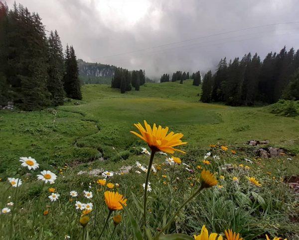 #lovenature #körbersee #mountains Körbersee