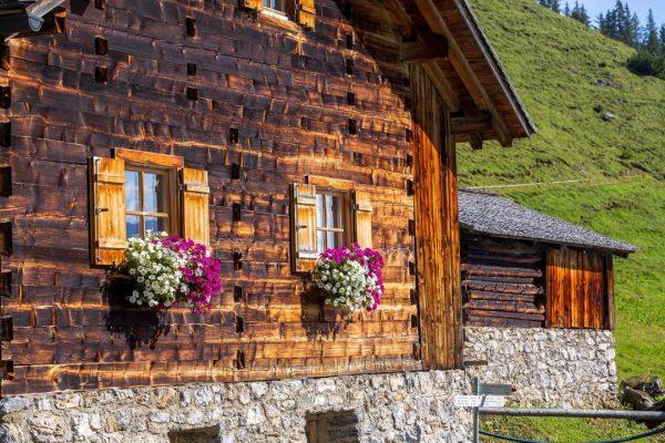 𝗠𝗼𝗻𝘁𝗮𝗳𝗼𝗻𝗲𝗿 𝗦𝗲𝗻𝗻𝗮𝗹𝗽𝗲𝗻 #𝟱 - 𝗔𝗹𝗽𝗲 𝗟𝗮𝘁𝘀𝗰𝗵ä𝘁𝘇 Im malerischen Gauertal gelegen, ist die Alpe ...