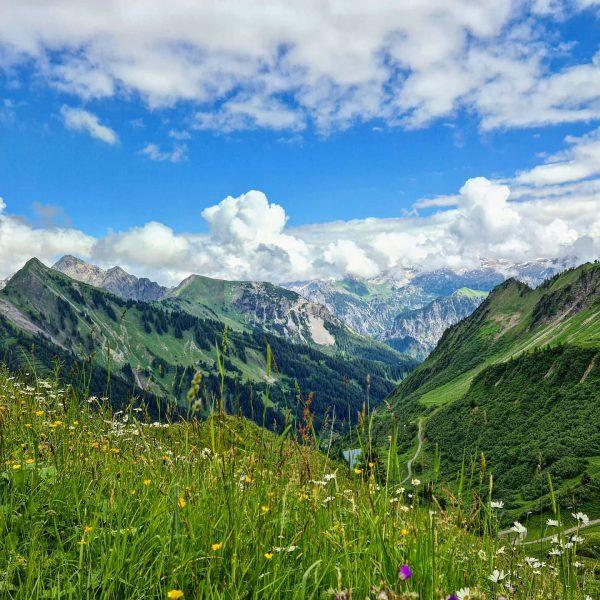 Schön war's im Bregenzerwald #österreich #vorarlberg #bregenzerwald #alpen #wandernimbregenzerwald #wanderninösterreich #mellau #alpen #bergwandern #wanderlust #draußen #gehdochmalraus #naturpur...