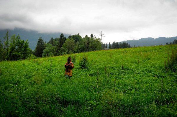 Kalt, nass, grün Schwarzenberg im Bregenzerwald