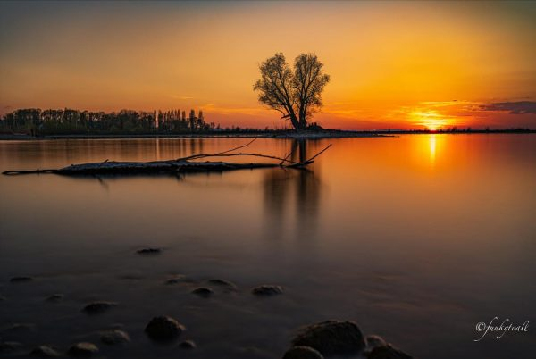 Sunset at the Lake ☀️ The nature reserve Rheindelta in Vorarlberg (Austria) is ...
