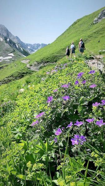 It's hiking time 💚 @lechzuers Am Weg zur Stuttgarterhütte. #auroralech #bergefürdieseele #bergliebe #mountainlovers ...