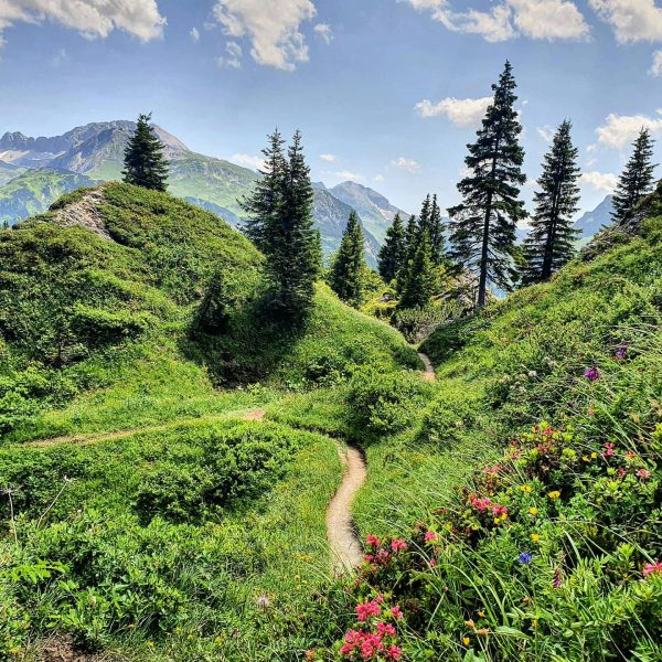 Perfect summerdays!! 🥰 Any plans? 😇 . . #summer #summerdays #hiking #wanderlust #wandern #outdoor #trails #nature #mountains...