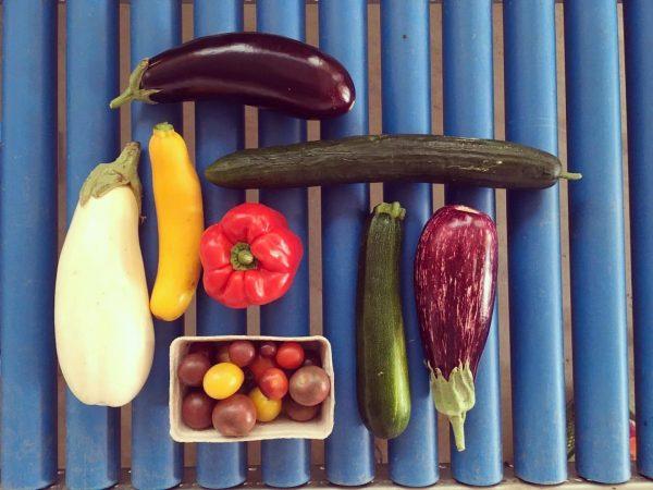 SOMMER IS ON! Morgen gibt's die ganze Gemüse-Grillpalette in unserem Hofladen. Und beste Grilltemperaturen obendrauf. Wir freuen...