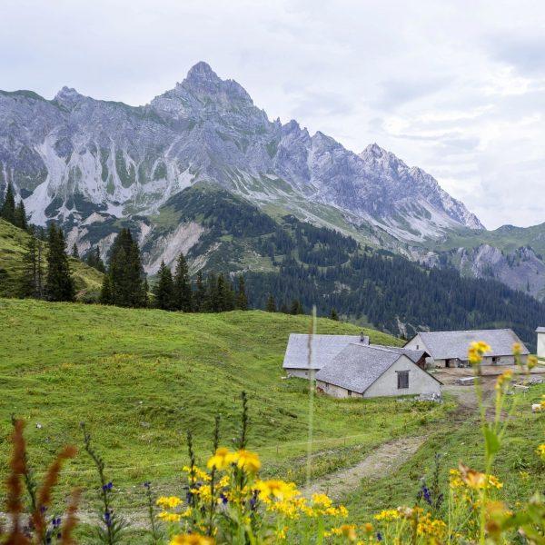 Alpserie #6 ALPE LÜN Das Rellstal, eines der schönsten Natur- und Pflanzenschutzgebiete der ...