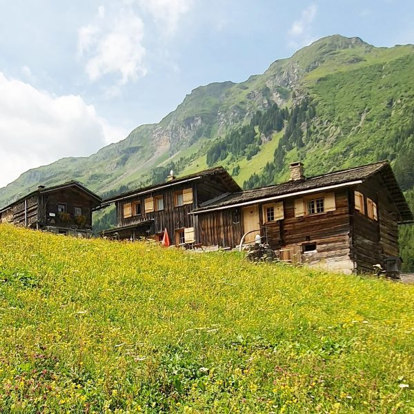 Wanderung durch das Ganeutal. Schöne Ausblicke und Anblicke inklusive. #ganeutal #berge #alpen #mountains #vorarlberg #montafon #silvretta #wandern...