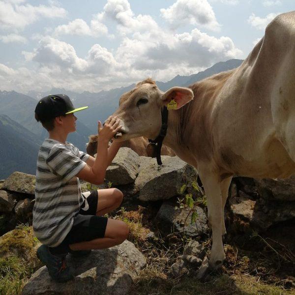 Alp Besuch - was für ein Traumtag auf dem Grasjoch 💚 #nahturhof #urlaubambauernhof #urlaubambauernhof #auszeit #unsertag #einentagindenbergen...