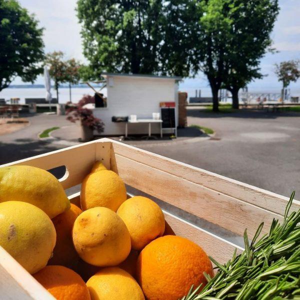 Unser SEEgarten hat heute von 12 - 22 Uhr für euch geöffnet. . Wir freuen uns auf...