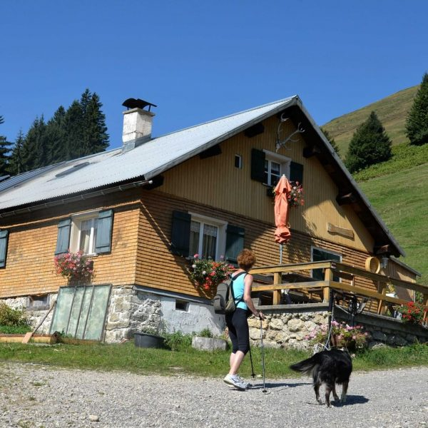 Die Alpe Juliansplatte liegt oberhalb des Lecknersee im Lecknertal-Hittisau. Am 24. Juli ab ...