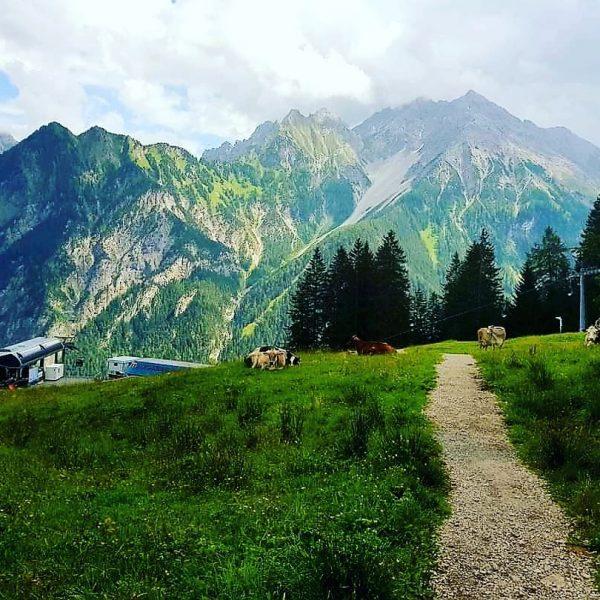 #wanderlust #wandern #meintraumtag #naturephotography #natur #naturvielfaltvorarlberg #naturliebe #naturerleben #visitvorarlberg #venividivorarlberg #meinvorarlberg #bergwelten #bergliebe ...