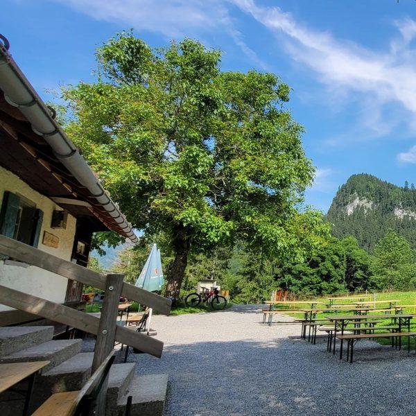 Äuelegrat, Beppo-Steig. Alpe Gsohl. Hohenems.  Kurz Runde, anspruchsvolle Runde zur Alpe Gsohl ...