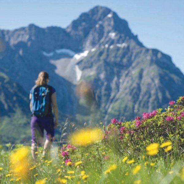 Wandern im Kleinwalserta l🏞: 185 km markierte Wanderwege, pure Idylle & Genuss für ...
