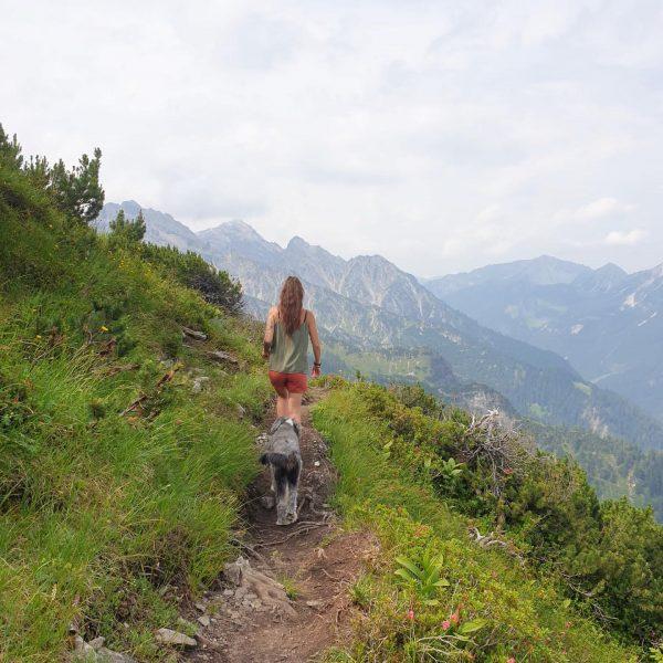 #schillerkopf2006m #wandern #wandernmachtglücklich #wandernmithund #wanderninösterreich #vorarlberg #vorarlbergwandern #sommer #wandernistschön #berge #bergliebe #bergzeit #mondspitze ...