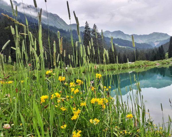 alps #lake #tyrol #nature #staywander #naturelovers #view #mountain #hiking #trip #tour #igersnature #visitaustria #kleinwalsertal #mountains #berge #alpen...