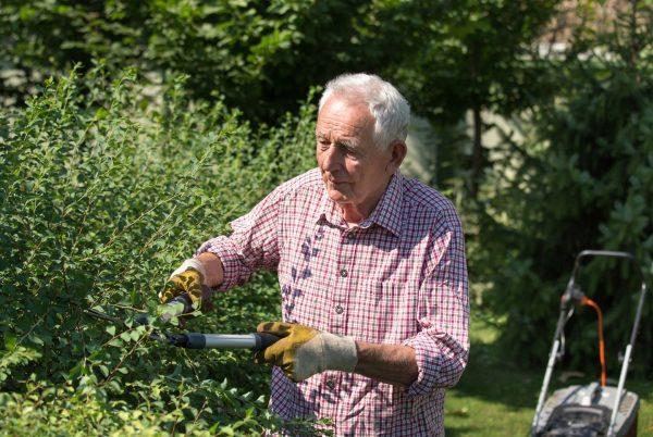 """""""Ma hilft anand!"""" - viele Seniorinnen und Senioren schätzen es, wenn ihnen jemand ..."""