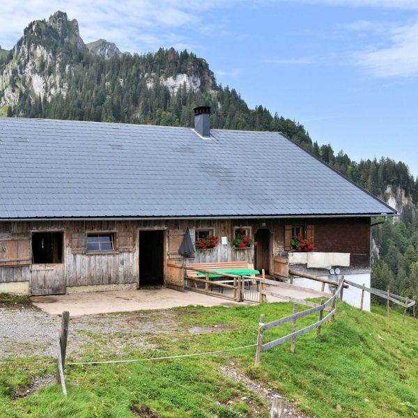 Die Alpe Vordere Unterspitz in Bezau wird von Klaus Gmeiner und seiner Familie ...