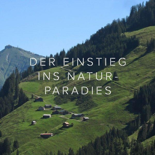 Naturparadies - Das ist der Bregenzerwald! Seine abwechslungsreiche Landschaft mit weiten Auen, sanften ...