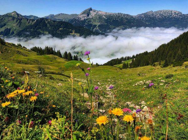 Ifen ⛰☀️ • • • #kleinwalsertal #kleinwalsertaltravel #vorarlberg #vorarlbergwandern #visitvorarlberg #ifen #austria🇦🇹 #austriagram ...