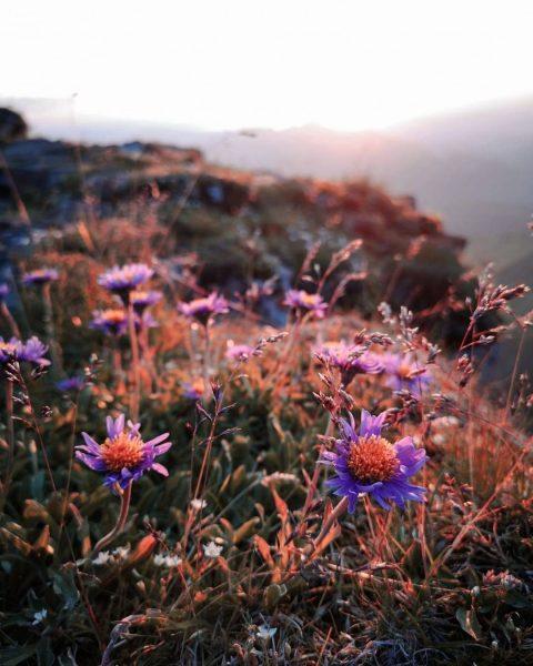 Wir LIEBEN den Herbst! Bunte Blätter, angenehme Temperaturen und goldenes Licht: Für uns ist das die schönste...