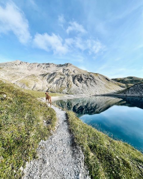 Alma enjoying the view 🍃🍂 #rotewandgourmethotel #paradise #naturelovers #autumn #lechzuers #visitvorarlberg #visitaustria Lech ...