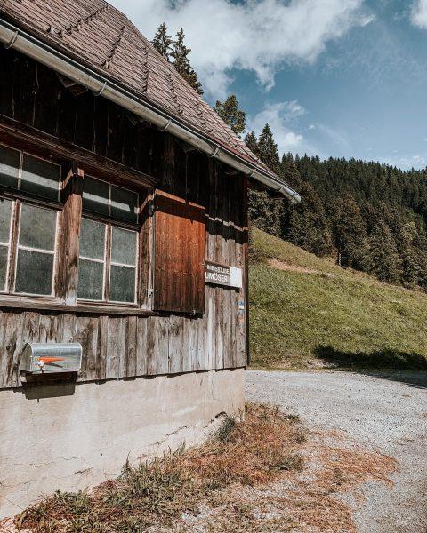 im Ebnit... - - #ebnit #ebniterleben #ebnitliebe #ausblick #view #mountains #berge #bergliebe #natur ...