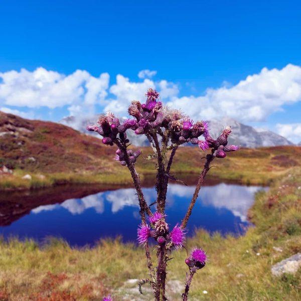 Diese schönen Herbstimpressionen aus unserer Klostertaler Bergwelt möchten wir euch nicht vorenthalten. 🍂 ...