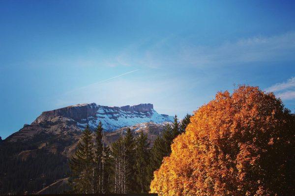 #ifen #herbst #wunderdernatur #herbsfarben🍁🍂 #sonnenschein #naturephotography #okbergbahnen #dailyallgäu #austria #kleinwalsertal #oberstdorf Hoher Ifen