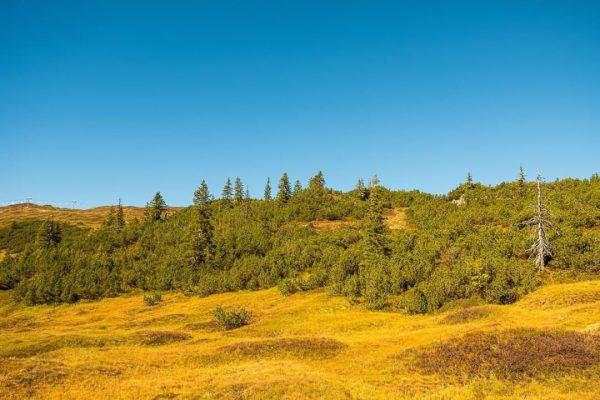 Berglandschaft am Sonnenkopf in Vorarlberg, Österreich #alpen #alps #Arlberg #Austria #autumn #Bärenland #berge ...
