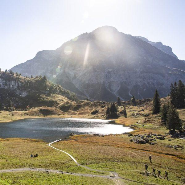 Golden season 🍂🤩 #autumn #myvorarlberg #visitvorarlberg #körbersee (c) David Beger Urlaubsland Vorarlberg