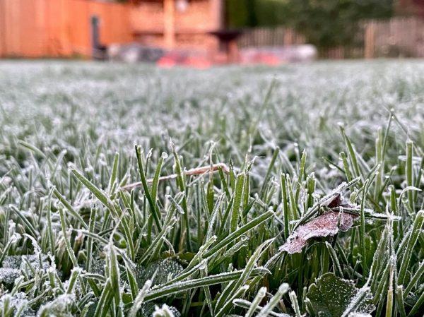 Der erste FROST ❄️ der Saison wurde heute mancherorts in den Niederungen registriert. ...