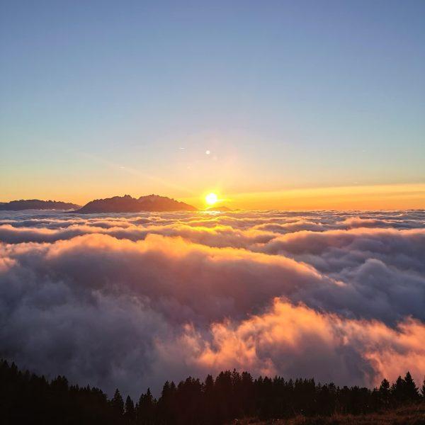 🔹Nebelmeer🔹 Ab und zua muass ma einfach hoch hinaus 😁. . . #bergliebe ...