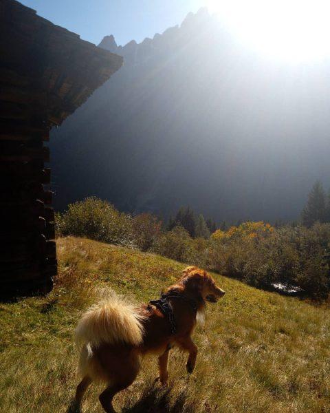 #meinmontafon #meintraumtag #silvrettamontafon #samy_kokoni Gargellen, Vorarlberg, Austria
