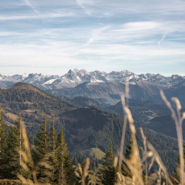 ⛰📸⛰ #oberallgäu #allgäu #bayern #mountainrunning #mountains #mountaineering #mountainlove #homeiswherethemountainsare #hindelang #hinterstein #oberstdorf #österreich #photographylovers #tbt #picoftheday #nature...