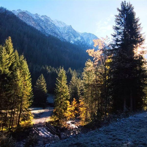 #gemsteltal #kleinwalsertal #fischenimallgäu #eichhörnchenwald #eichhörnchen #allgäu #berge #wandern #urlaub Fischen im Allgäu