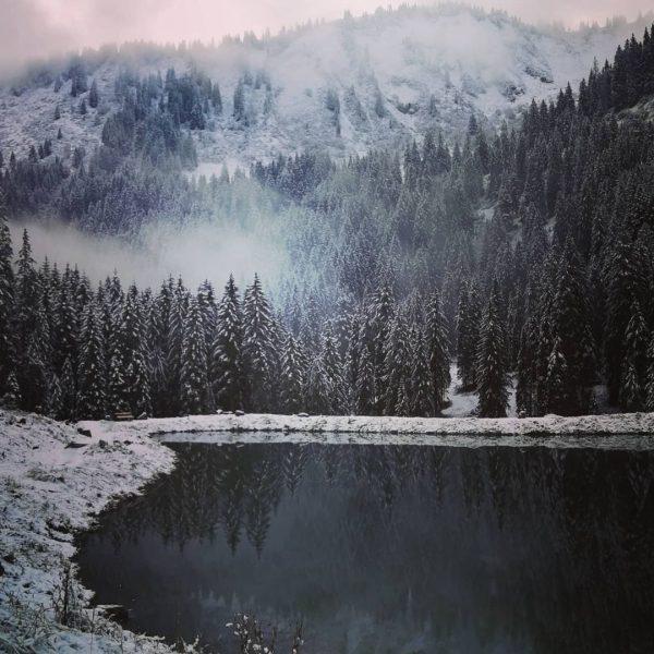 #NatureExplorerAschaffenburg #instagarden #hobby #gipfelstürmer #bergsehnsucht #aschaffenburgleben #meinaschaffenburg #naturerleben #vhsaschaffenburg #daslebenistschön #kleinwalsertal #bergwandern #mountains #gipfel #auszeitfürdieseele #bergliebe #bergblumen...