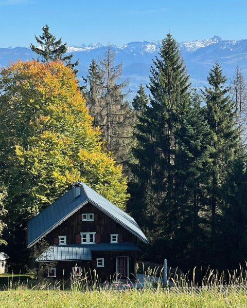#pfänderbahn #pfänder #allgäu #allgäueralpen #montafon #austria #alps #derherbstistda #goldeneroktober #goldenoctober #autumn #autumncolors #herbstfarben ...