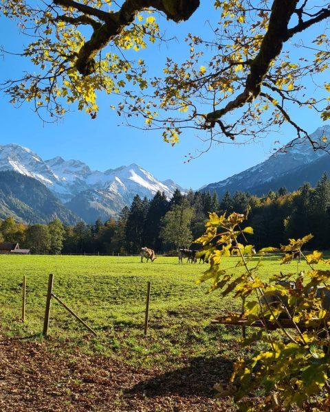 Allemachtig prachtig, vandaag in de bergen #Kleinwalsertal #Oberstdorf #Austria #berge #herbst #autumn #walking ...