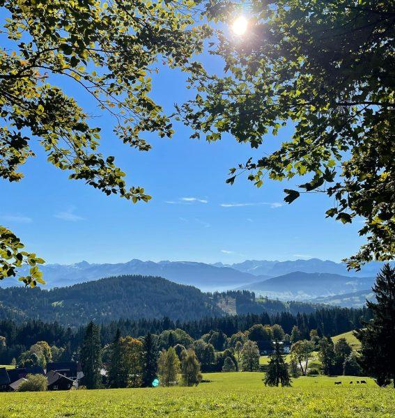 Auf dem Pfänder-Höhenweg bei herrlichem Herbstwetter #pfänder #höhenweg #pfänderhöhenweg #hiking #wanderlust #vorarlberg #herbst ...