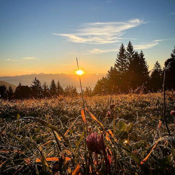 Morning praise #squint #setfree #sunrise #pfänder #vorarlberg #vorarlbergwandern #wanderlust #bergwelten #hike Pfänder