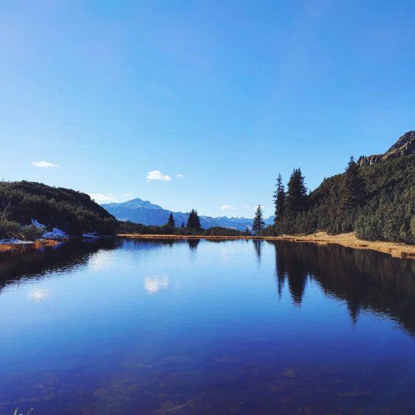 Ein goldener Oktobertag rund um den #Wiegensee #Europaschutzgebietverwall 🌄🏞️🍁🍂🦅 #naturelove #wanderlust #mountainlove #vorarlberg ...