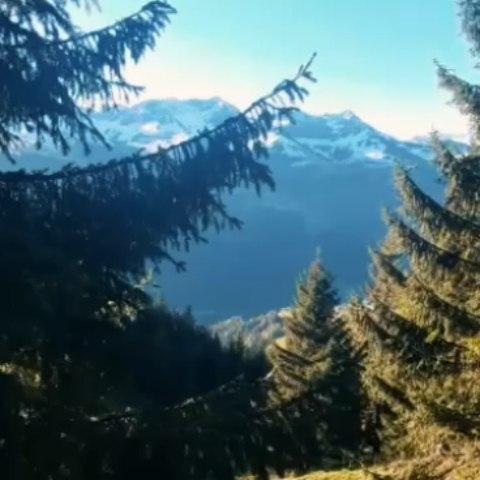 Imposante Wanderung auf das Zafernhorn. Stsrt ist der Wanderparkplatz in Faschina, von dort aus ging es Südseitig...