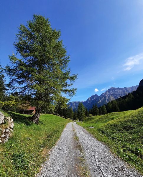 Jetzt aber schnell hoch in die Berge und dieses tolle Wanderwetter genießen!☀️🥾 Es gibt tolle Ausblicke zu...